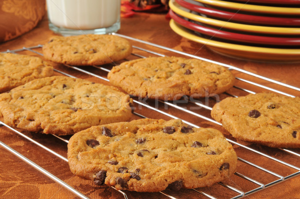 Chocolade chip cookies koeling rack vers Stockfoto © MSPhotographic