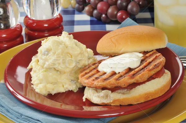 Zalm hamburger picknicktafel aardappelsalade tabel lunch Stockfoto © MSPhotographic