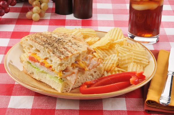 トルコ チーズ サンドイッチ ピクニックテーブル ソフトドリンク ガラス ストックフォト © MSPhotographic
