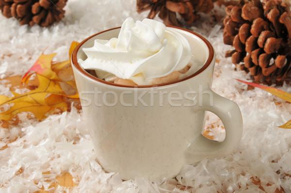 Hot chocolate and whipped cream Stock photo © MSPhotographic