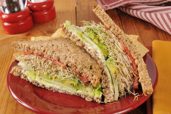 Vegetable sandwich Stock photo © MSPhotographic
