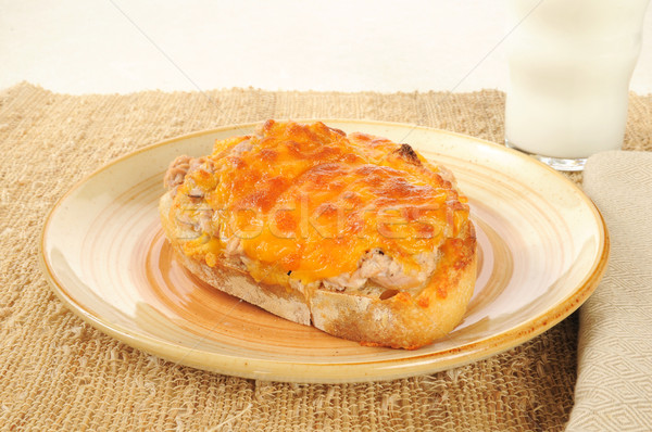 Tuna melt with milk Stock photo © MSPhotographic