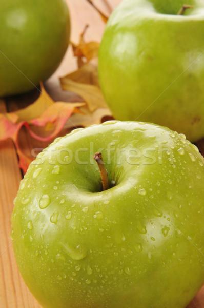 Nagyi almák közelkép zöld harmat cseppek Stock fotó © MSPhotographic