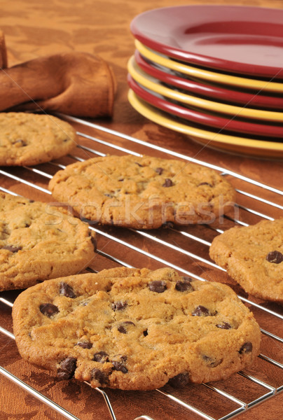 Fresh baked chocolate chip cookies Stock photo © MSPhotographic
