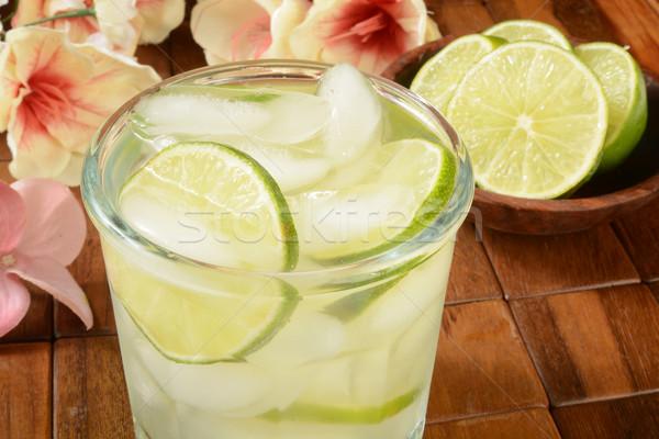 Vodka citrus trópusi bár üveg jég Stock fotó © MSPhotographic