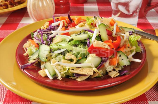 Chinese Chop Salad Stock photo © MSPhotographic