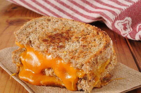 Grillezett sajt szendvics egész gabona kenyér Stock fotó © MSPhotographic