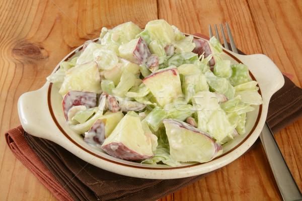 Salátástál saláta rusztikus fa asztal villa étel Stock fotó © MSPhotographic