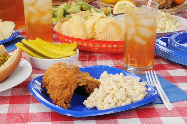 Kip picknicktafel macaroni salade zomer Stockfoto © MSPhotographic