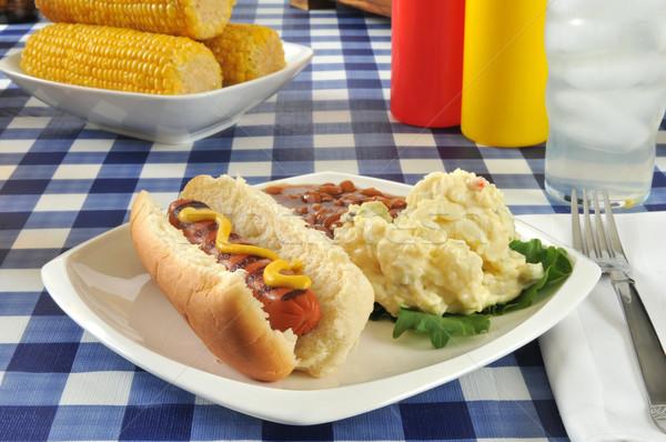Gegrild mosterd hond picknicktafel aardappelsalade gebakken Stockfoto © MSPhotographic