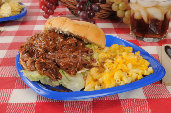 Sloppy joe on a picnic table Stock photo © MSPhotographic