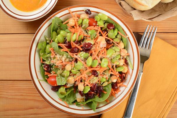 Saláta egészséges áfonya vacsora tányér vízszintes Stock fotó © MSPhotographic