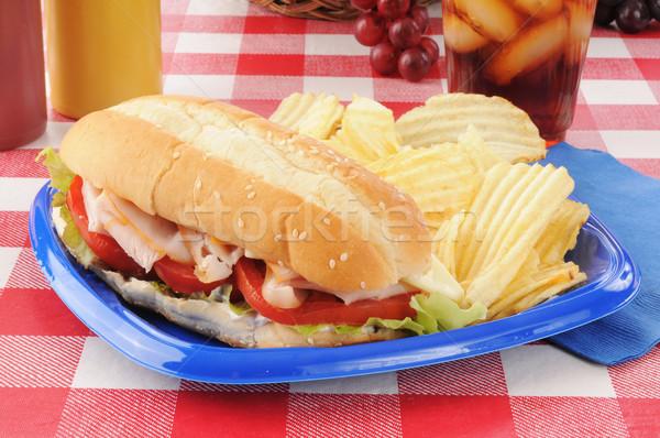 Turkije onderzeeër sandwich kaas picknicktafel voedsel Stockfoto © MSPhotographic