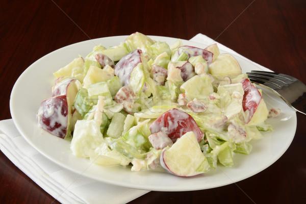 Salata plaka basit ahşap tavuk çatal Stok fotoğraf © MSPhotographic