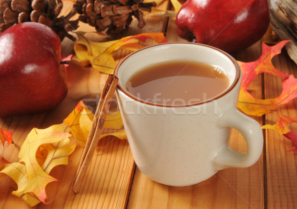 Hot apple cider Stock photo © MSPhotographic