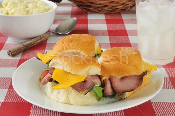 Rundvlees picknicktafel aardappelsalade citroen kaas picknick Stockfoto © MSPhotographic