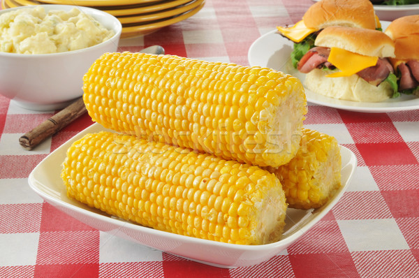 corn on the cob Stock photo © MSPhotographic