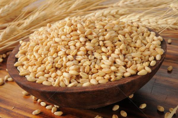 全粒小麦 木製 ボウル 新鮮な 小麦 自然 ストックフォト © MSPhotographic