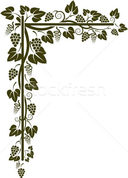 Esquina vid silueta vino resumen hojas Foto stock © mtmmarek
