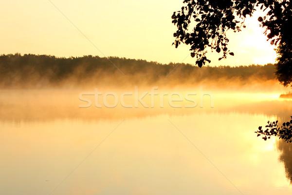 туманный озеро мнение Восход природы праздник Сток-фото © mtmmarek