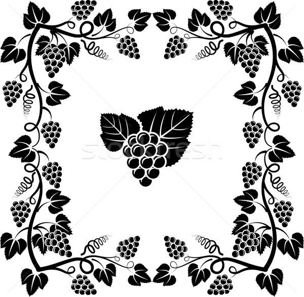 Winorośl winorośli ramki projektu sylwetka Zdjęcia stock © mtmmarek