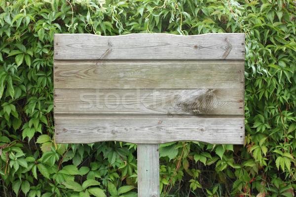 Fából készült fogkő szőlő textúra kert háttér Stock fotó © mtmmarek