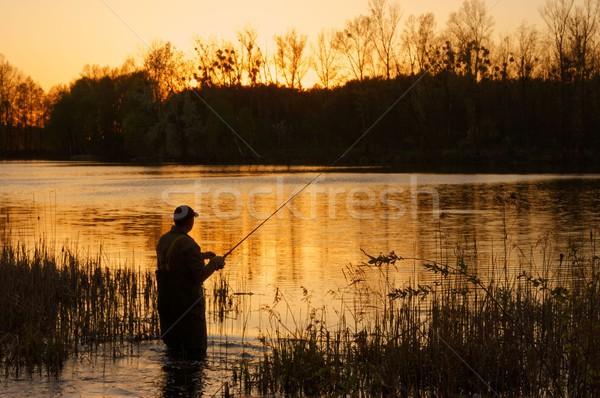 Visser zonsondergang voorjaar natuur meer vissen Stockfoto © mtmmarek