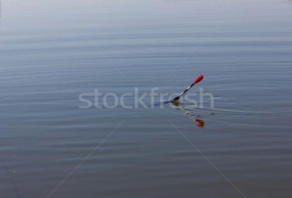 float  Stock photo © mtmmarek