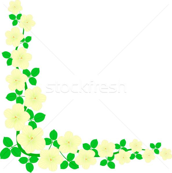 веточка изолированный углу цветы дерево Сток-фото © mtmmarek