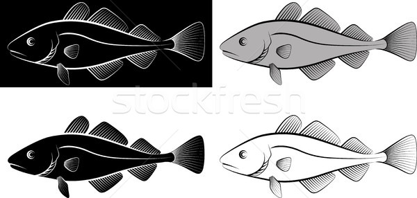 Isolé poissons clipart illustration ligne art Photo stock © mtmmarek