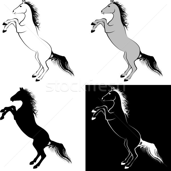 Cheval clipart illustration ligne art design Photo stock © mtmmarek