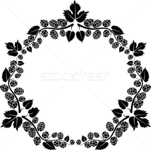 Hop frame fiori natura impianto profilo Foto d'archivio © mtmmarek