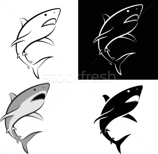 Tubarão isolado clip-art ilustração linha arte Foto stock © mtmmarek