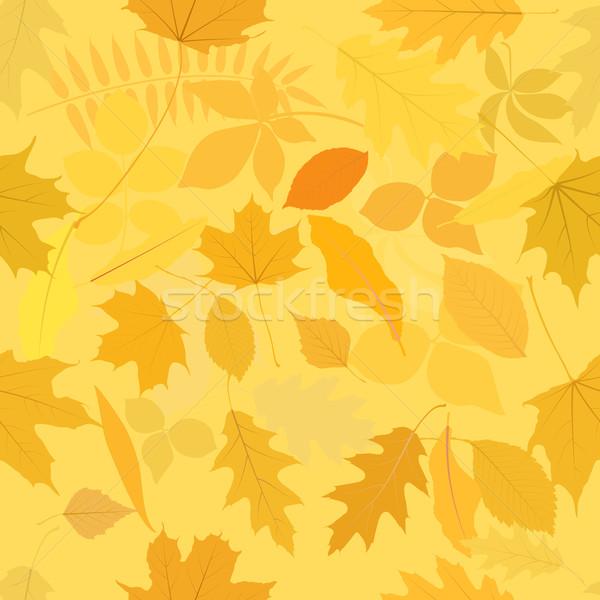Model yaprakları yaprak arka plan dokular Stok fotoğraf © mtmmarek
