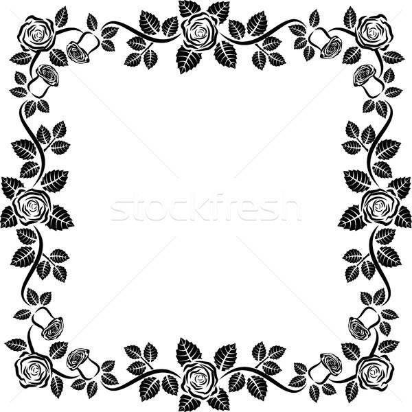 Róż odizolowany ramki kwiaty wzrosła granicy Zdjęcia stock © mtmmarek