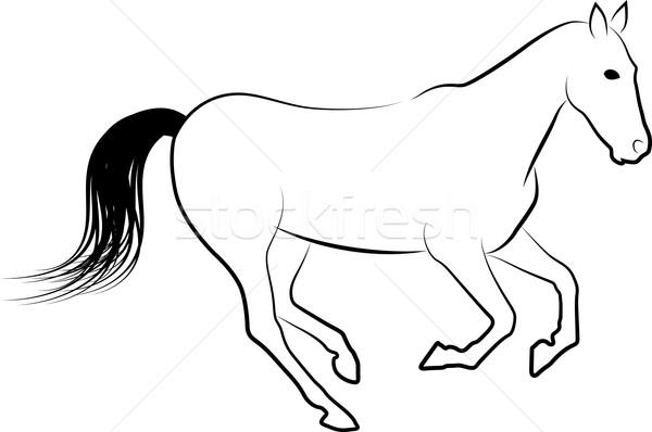 horse Stock photo © mtmmarek