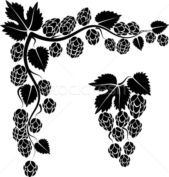 Salto canto galho flores natureza planta Foto stock © mtmmarek