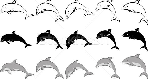 Delfin odizolowany clipart ilustracja line sztuki Zdjęcia stock © mtmmarek