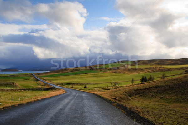 Road in Iceland Stock photo © mtoome