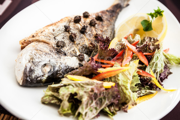 Gilt-head bream fish Stock photo © mtoome