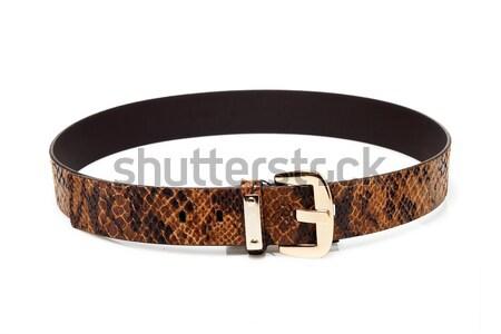 Snake leather belt Stock photo © mtoome
