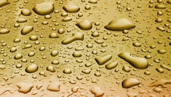 water drop on car Stock photo © muang_satun