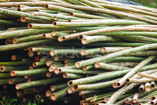 Bambu mobilya doğa arka plan yeşil Stok fotoğraf © muang_satun
