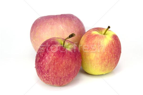 Elma kırmızı gıda doğa elma taze Stok fotoğraf © muang_satun