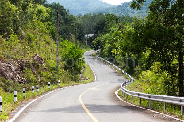 Road curves Stock photo © muang_satun