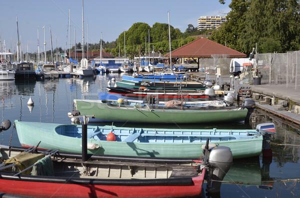 Vissen haven Frankrijk banken meer afdeling Stockfoto © Musat