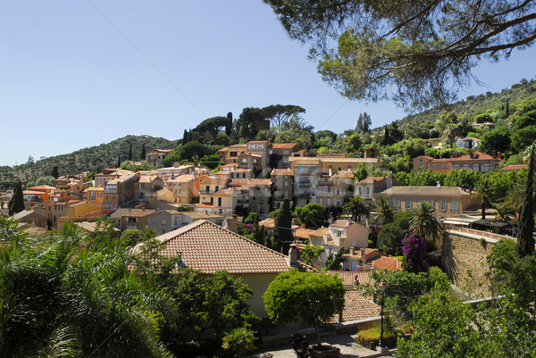 Village of Bormes les Mimosas in France Stock photo © Musat