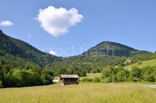 Bergen frans alpen dorp groot witte Stockfoto © Musat