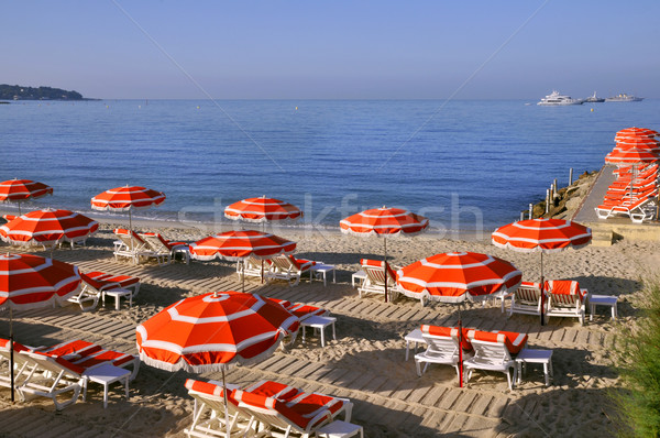 Sunshades on the beach in France Stock photo © Musat