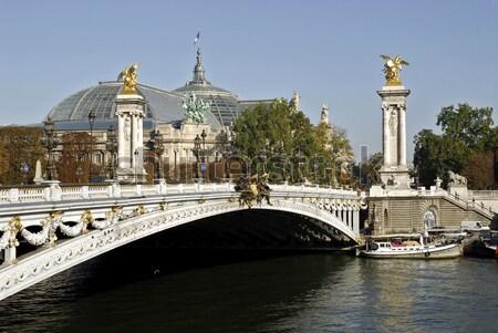 Parijs brug kruisen rivier Frankrijk loof Stockfoto © Musat